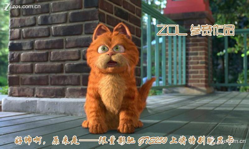 经典的加菲猫,经典的表情,配上对白,作者才思可见一斑.