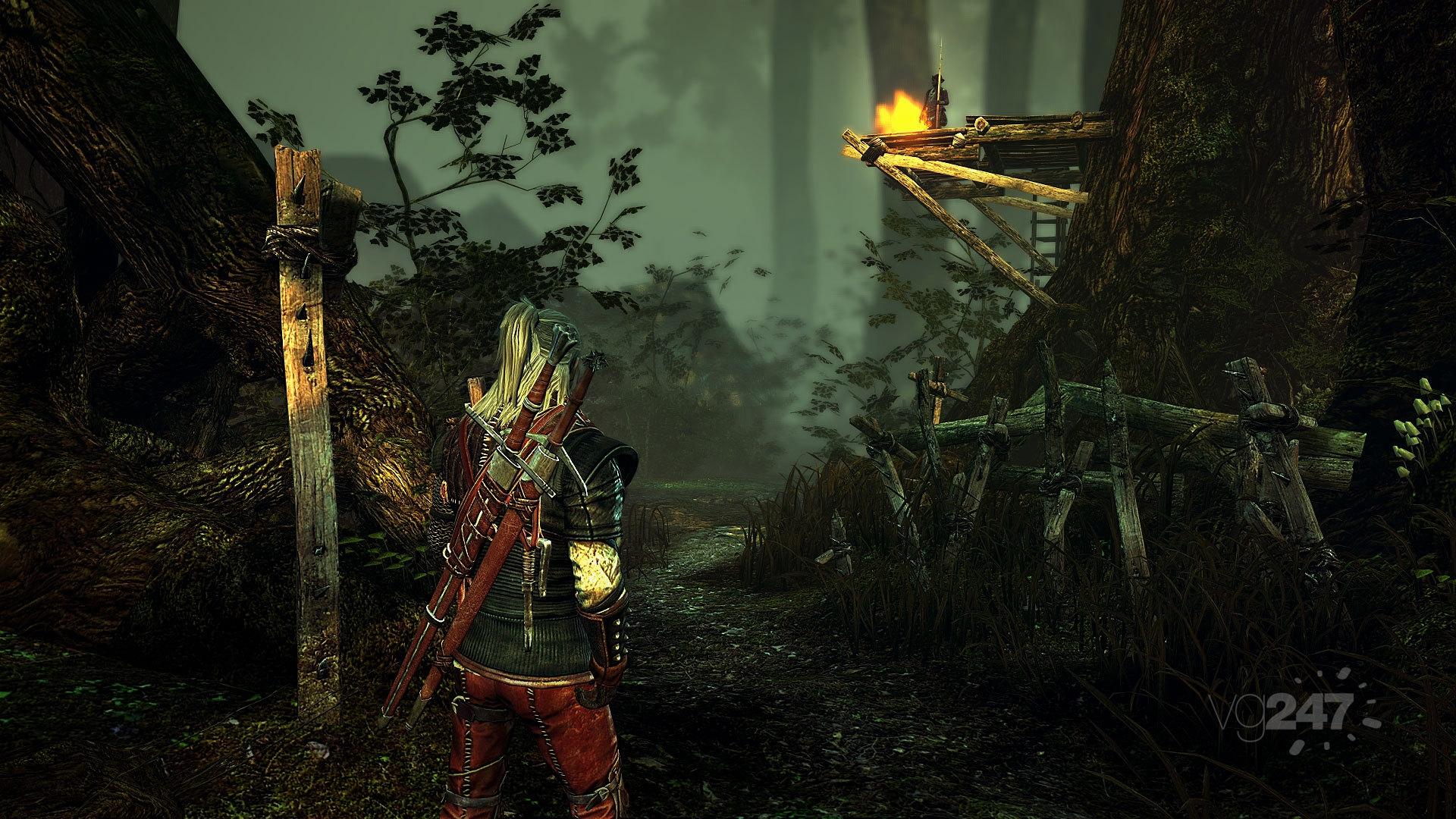 Новые скрины Witcher II.