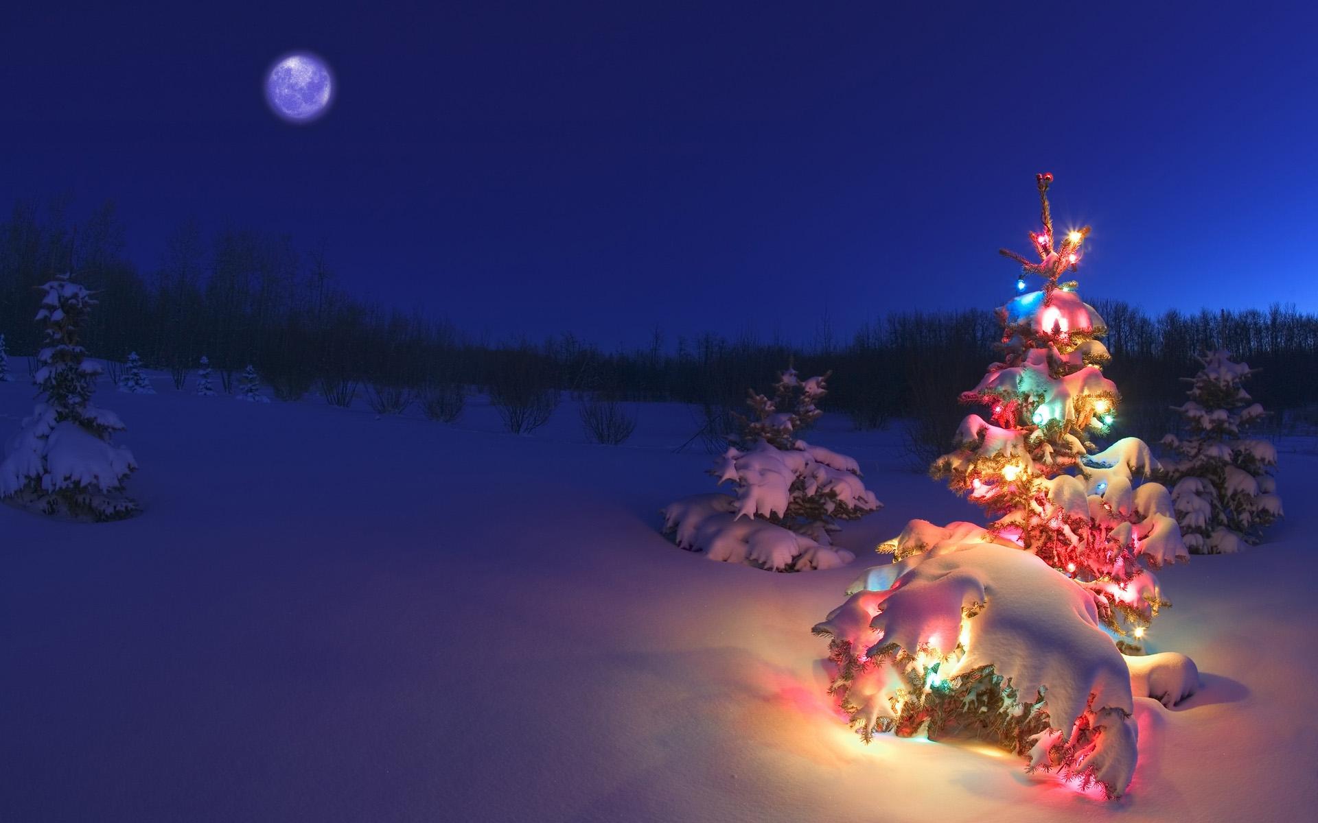 """迎接圣诞:windows 7官方新主题""""节日彩灯"""""""