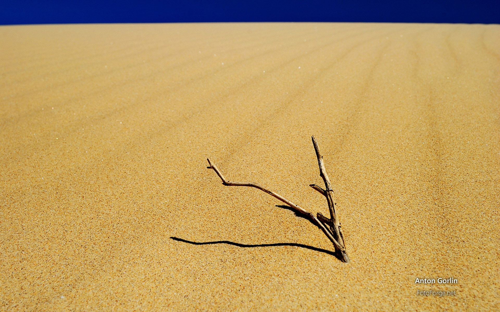 继德国美景三连弹之后,微软日前又发布了两款风景类主题,这次转战澳大利亚,分别为《澳大利亚风景》、《澳大利亚沿岸风光》,其中壁纸来自摄影师Ian Johnson和Anton Gorlin。 壁纸图赏: 《澳大利亚风景》: