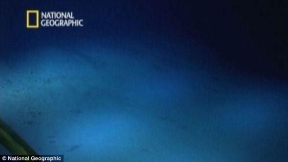 卡梅隆深海拍摄录像公布