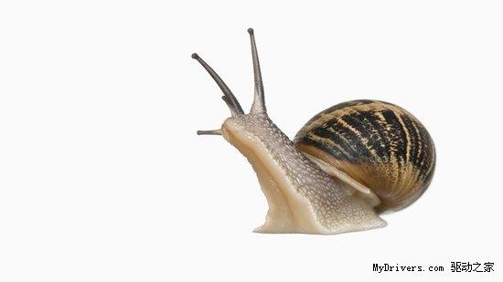 疯狂科学家造半机械怪物 蜗牛成为移动发电厂