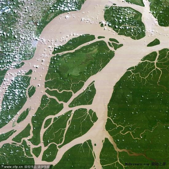 巴西亚马逊河三角洲